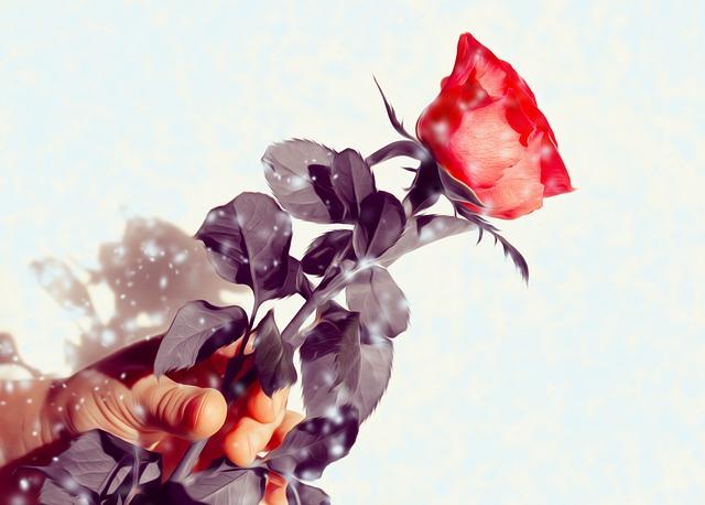 Rose Dank